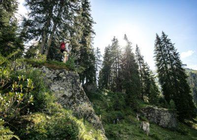 wald-erfahren-kommunikation-kongresse-events-marketing-arlberg-well-com-in-st-anton-am-arlberg